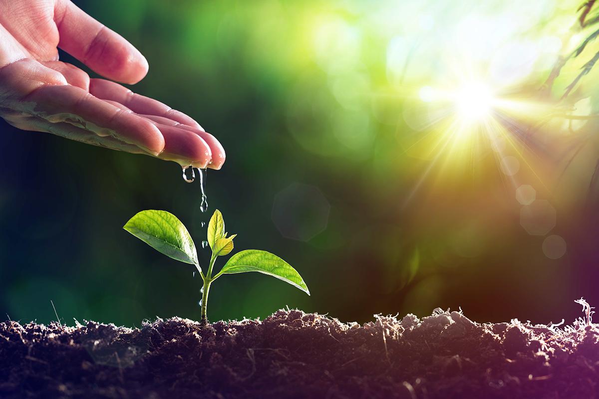 Weil Nachhaltigkeit mehr ist